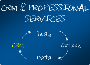CRM and Professional Services